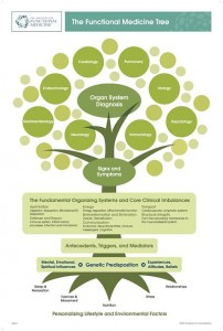 IFM-Functional-Medicine-Tree-_opt